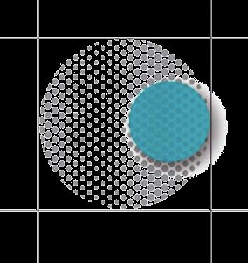 logo2_transp.png